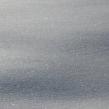155x155_Siberia-Emiliana18