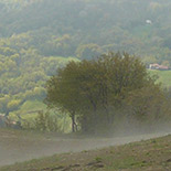 155x155_dopo-la-pioggia1