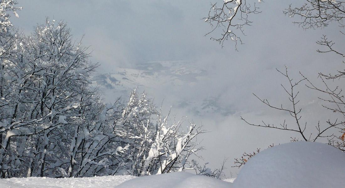 Siberia-Emiliana12