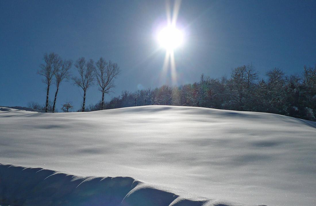 Siberia-Emiliana16